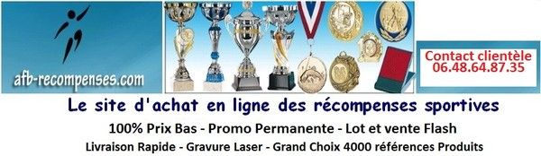 Afb recompenses coupes medailles trophees - Trophees coupes recompenses ...